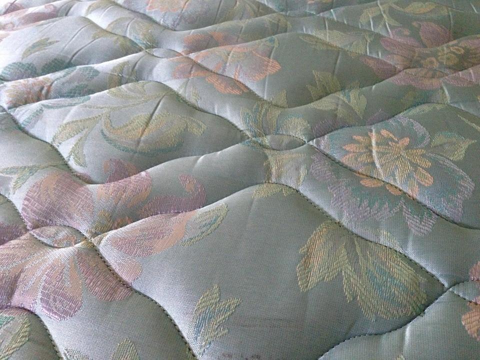 カビ菌ベッド
