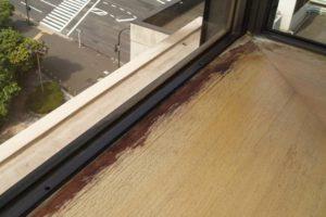 木材のカビ除去にはコツがいる!正しい対策で美観と健康を守る