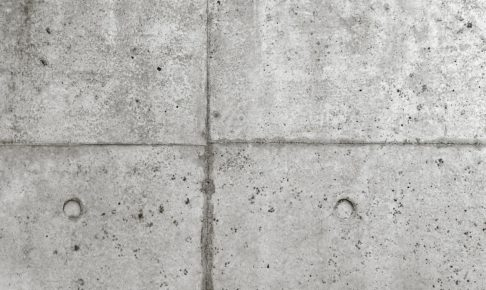 コンクリート壁のカビ除去を専門業者に依頼すべき理由とは?