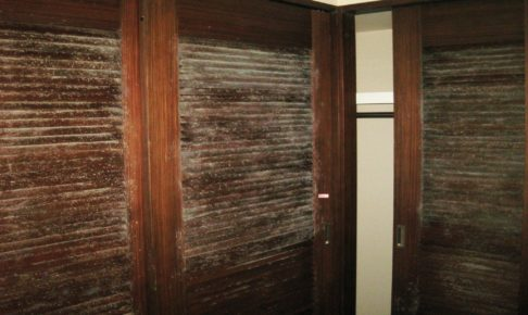 木材にカビキラーが使えない理由とは?